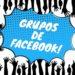 5 mejores grupos en Facebook para quien va a viajar por Brasil
